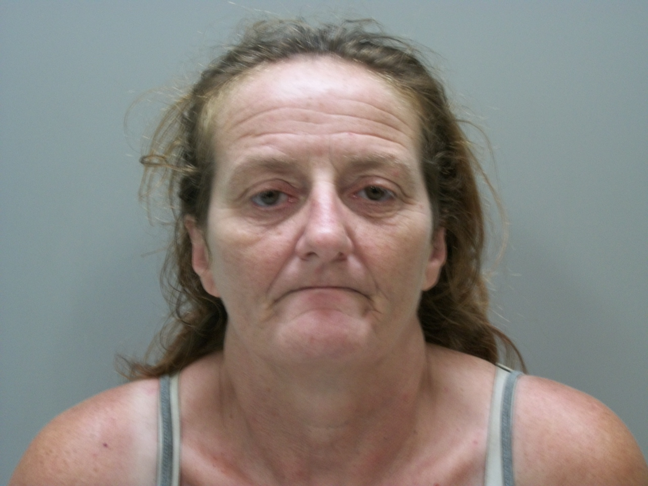 DOROTHY LUEANN ASHLEY (WCSO)